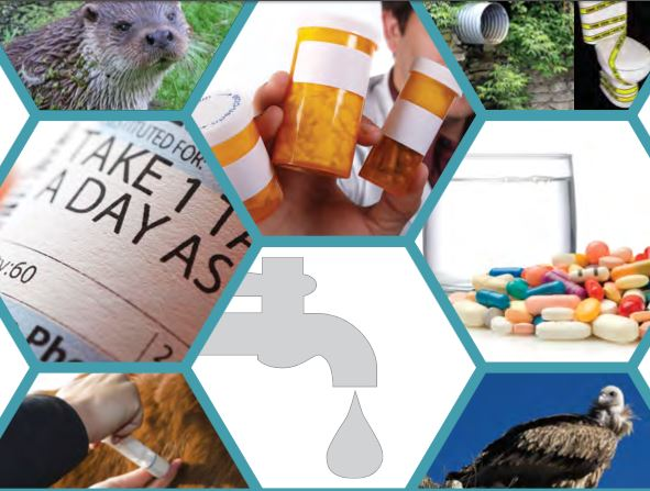 CHEM Trust Report: Pharmaceuticals in the Environment